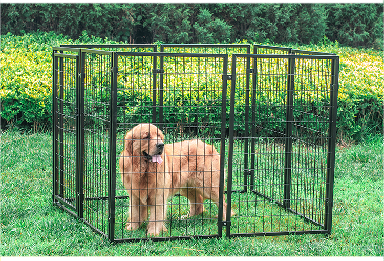 metal dog kennel wholesale