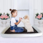 pet bed mat dog bed cushion sleeping pet mat dog mattress