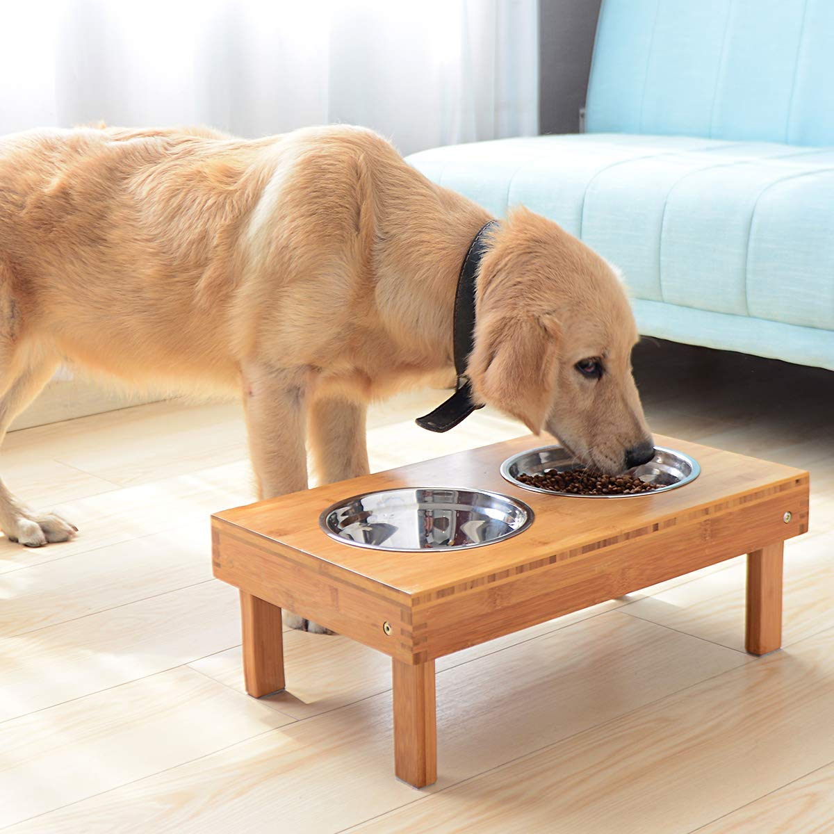 Manufacturer wholesale Dog bowl wholesale elevated dog bowl raised dog bowl Elevated Pet Feeder