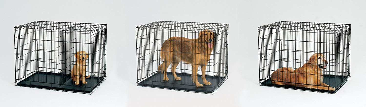 Folding Pet Crate Metal Dog Crates