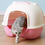 hooded cat litter toilet box with scoop