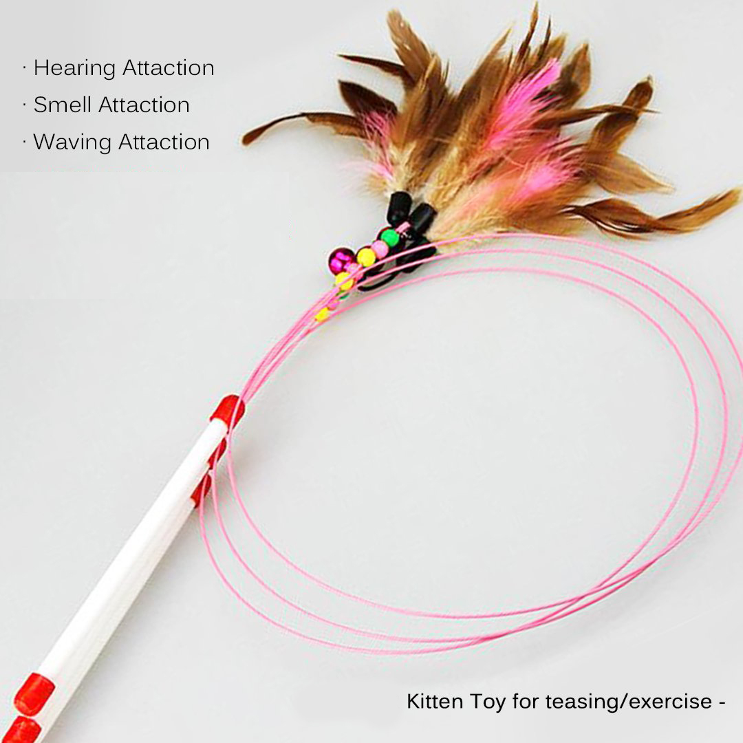 Cat interactive play toy cat exercise toy cat charmer wand cat teaser wand