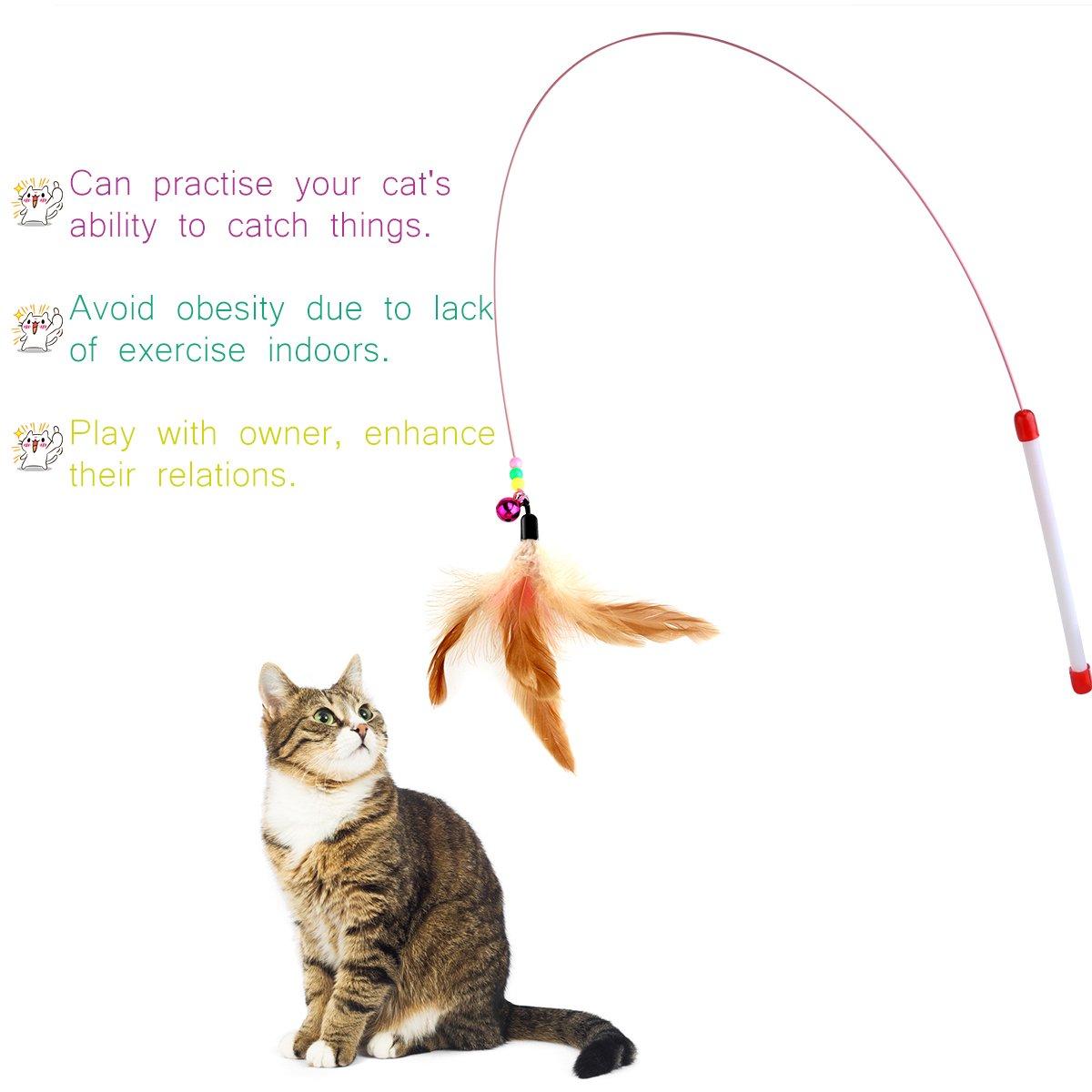 cat charmer wand cat teaser wand