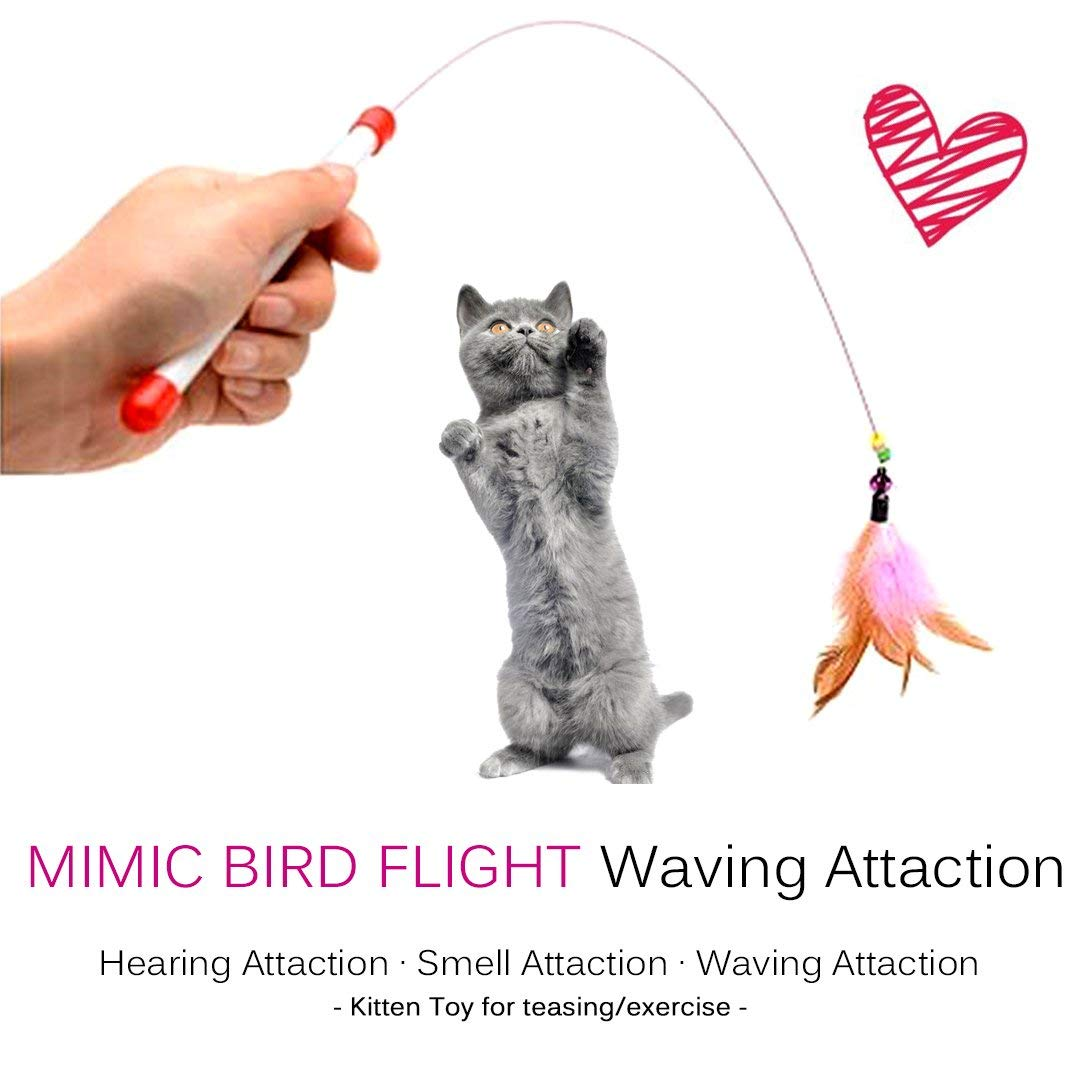 cat exercise toy cat charmer wand cat teaser wand