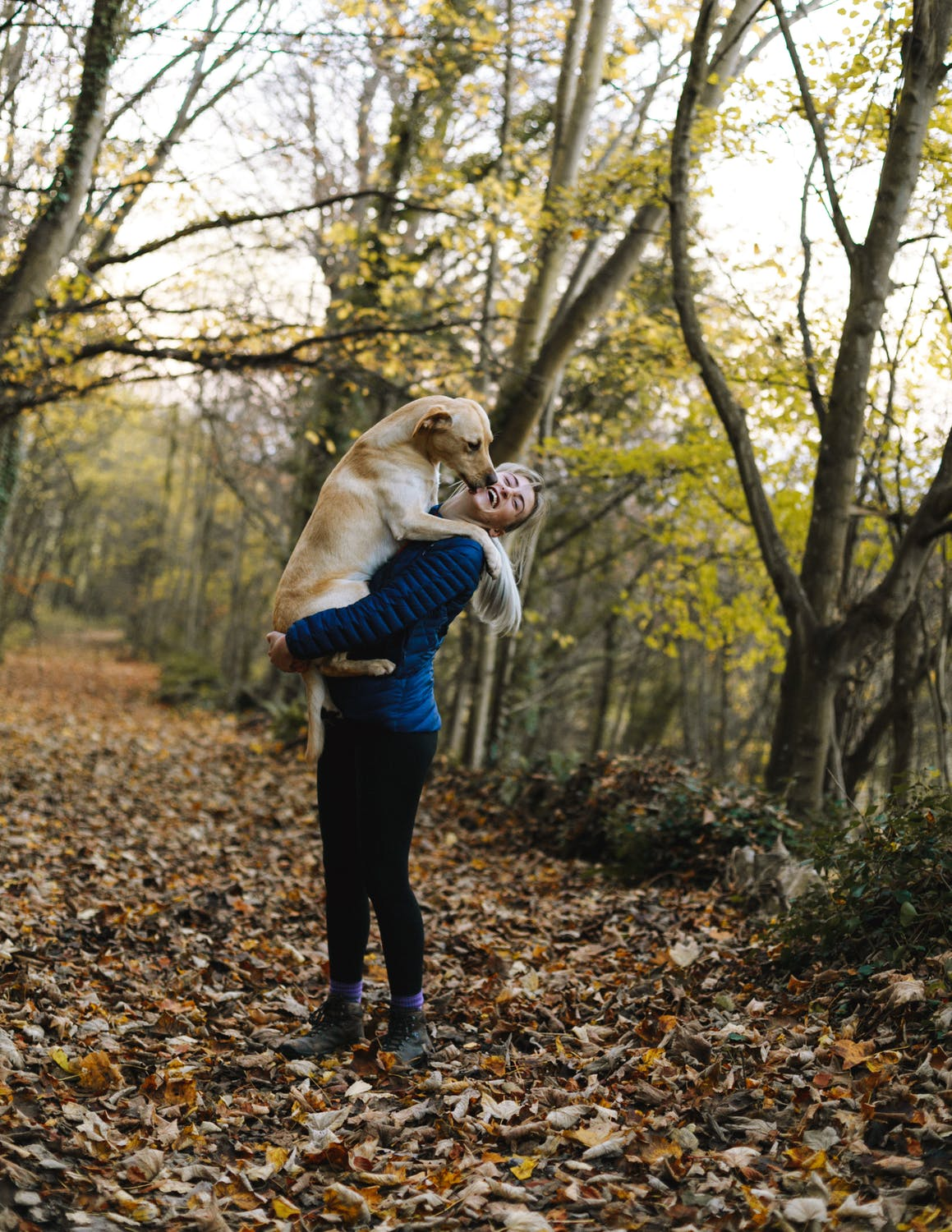 7 Benefits of Playing With Your Dog