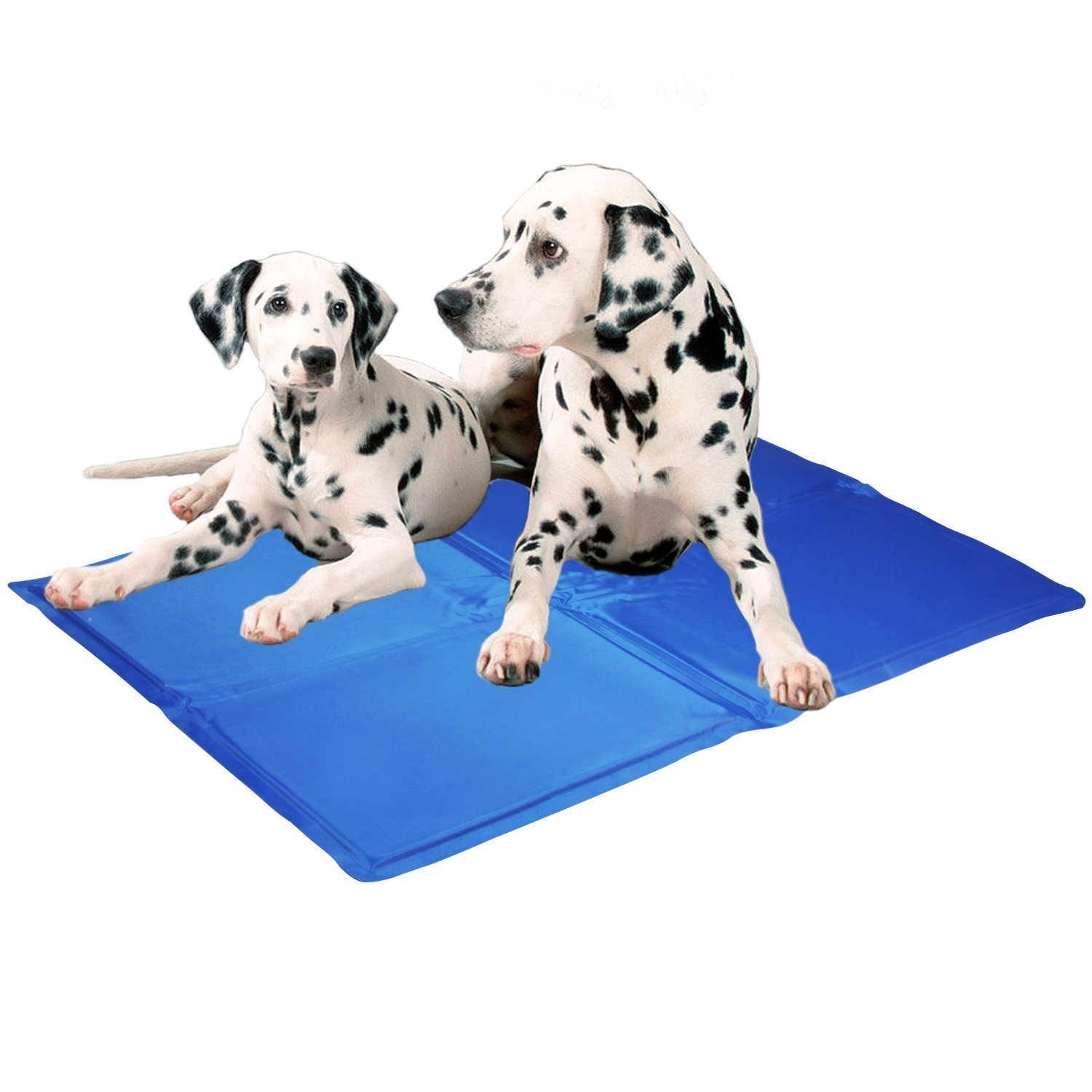 How to make the qualified pet cooling mat by lepet dog cooling mat manufacturer