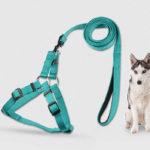 adjustable durable dog leash harness set