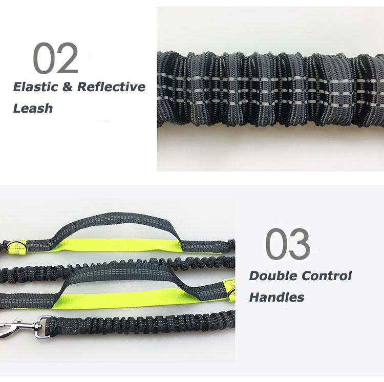 Hands free dog leash manufacturer