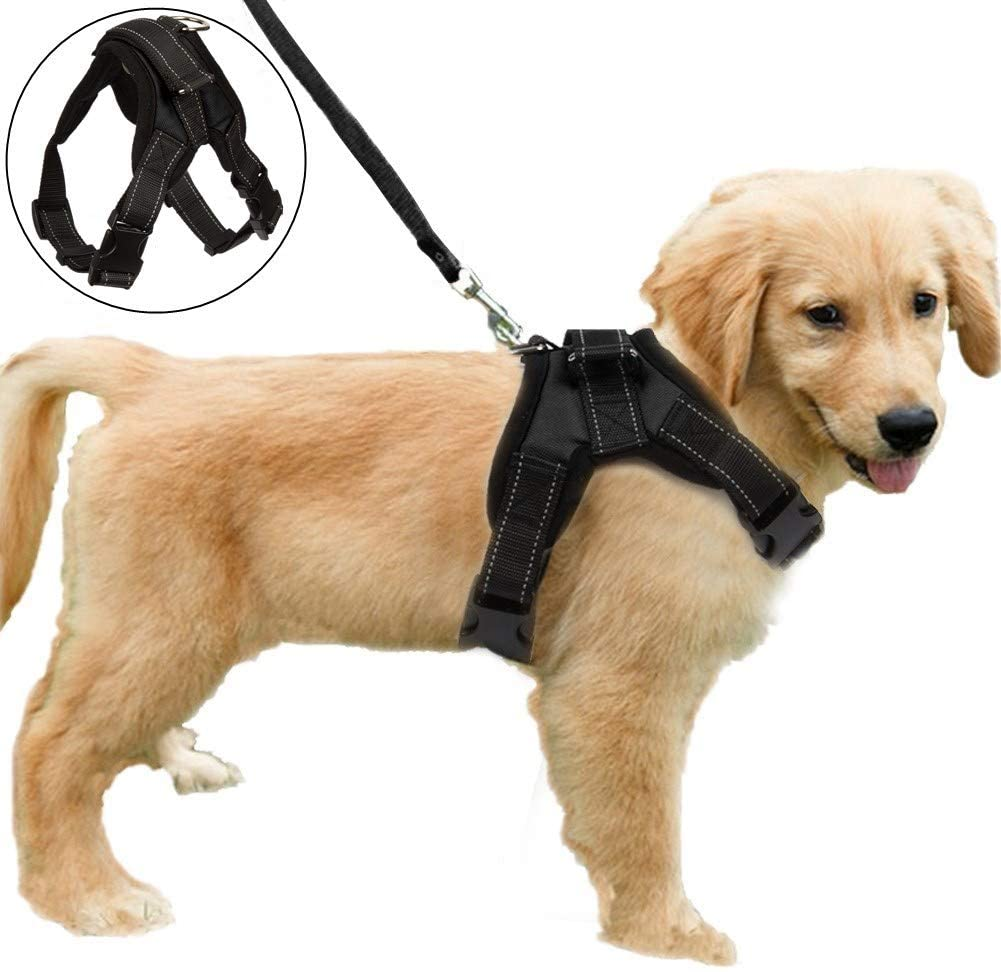 Reflective No Pull Dog Harness Adjustable Padded Dog Harness Vest Manufacturer
