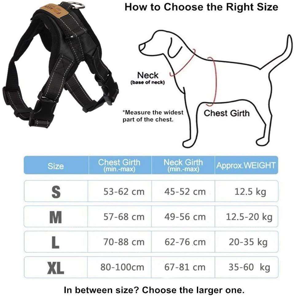 Reflective No Pull Dog Harness Manufacturer