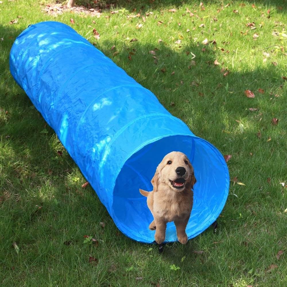 Manufacturer of Collapsible Dog Tunnel Outdoor Training